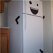 fridge-featured-11-5-13