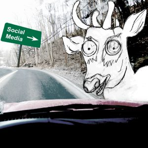 inside car with social media sign and deer in headlights