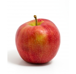 A picture of an Apple Fruit