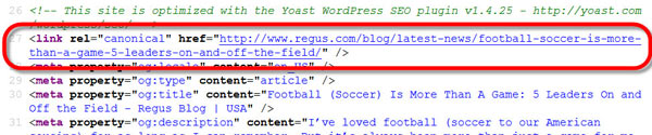 A screenshot showing the canonical tag code on a website